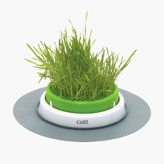 43161W_Grass-Planter_product-thumbnail
