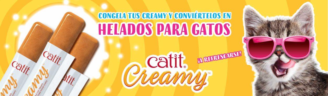 Congela tus creamy conviértelos en helados para gatos