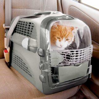 Se puede sujetar en el coche usando cinturones de seguridad convencionales
