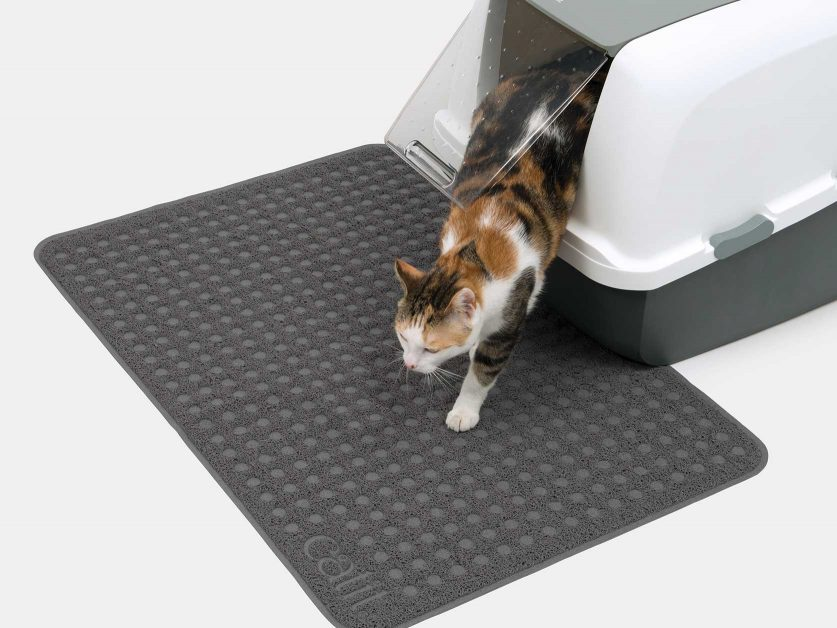 Catit Litter Mat will keep the floor free of cat litter - large