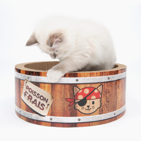 Pirates - Barrel Scratcher - Large B