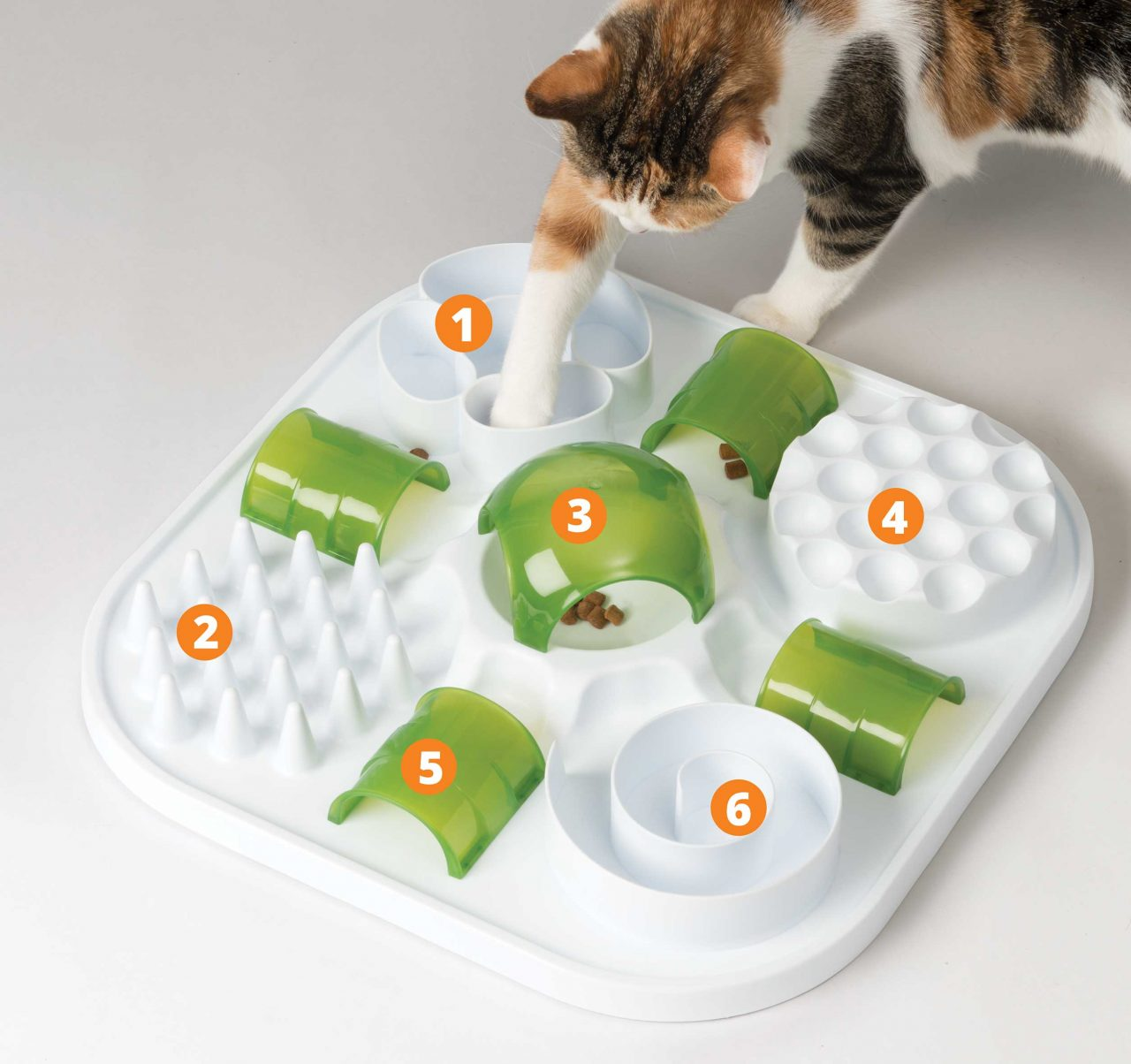 Place treats or kibble in the different puzzle parts