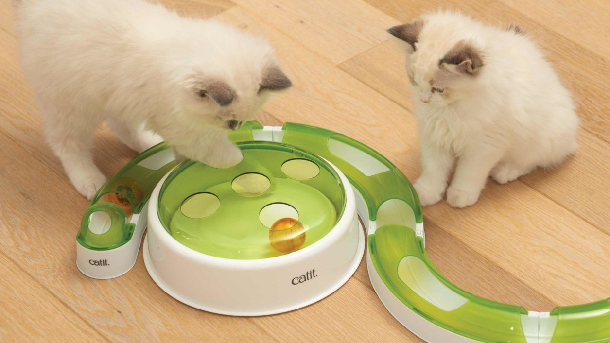 El Bal Dome se piede combinar con la línea de juguetes interactivos para gatos Catit Senses 2.0