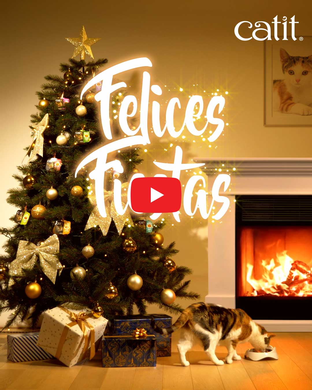 Felices Fiestas Video